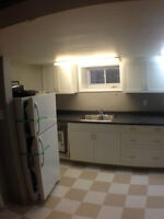 Bright newly renovated basement with two bedrooms – Kingscourt