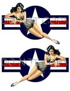 Pinup Vinyl Decal USAF ROUNDEL Cars Motorcycles #1224