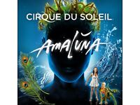 Two tickets for Cirque du Soleil - Amaluna — Royal Albert Hall. Sat 25th Feb