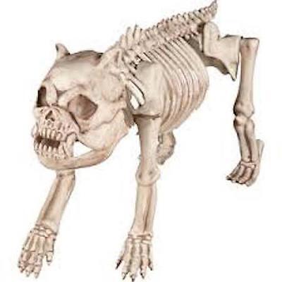 New Skeleton Dog Halloween Prop Spirit Brand NWT decor decoration