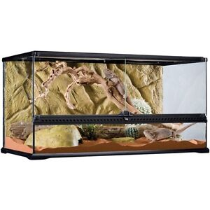 Looking for a large terrarium for my beardie