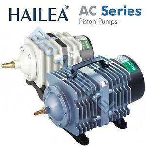 Hailea ac piston air compressor pump koi fish pond for Coy pond pump
