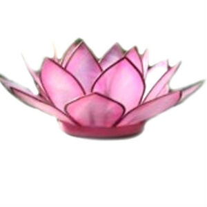 Lotus-Flower-Capiz-Shell-Flamingo-Pink-Tea-Light-Holder-free-candle-Blue-Trumpet