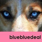 bluebluedeal