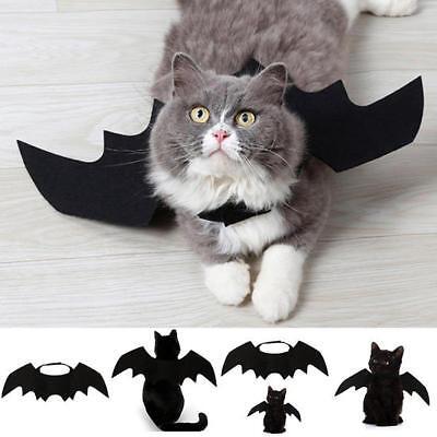 Animal Pet Dog Cat Bat Vampire Halloween Black Fancy Dress Costume Outfit Wings