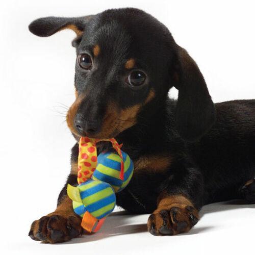 PUPPY DOG SHOP.COM domain for sale.