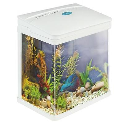 Small starter aquarium fish tank coldwater tropical led for Starter fish tank
