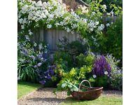 Walters Garden Services - Garden Maintenance Bristol to Bath