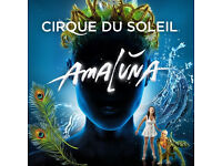 First row ticket to Friday AMALUNA Cirque du Soleil show at 3:30pm