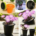 Multicolor Resin Control Root Flower Pots Hydroponics Soi...