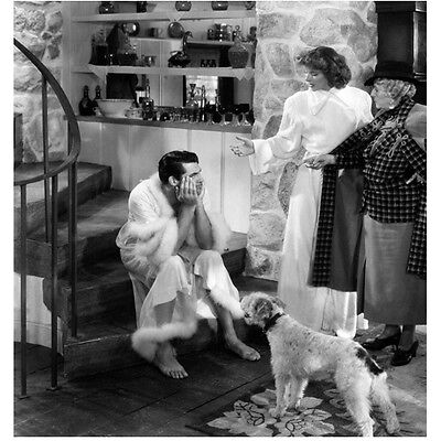 Cary Grant Seated on Stairs in Womans Robe with Dog 8 x 10 Inch Photo