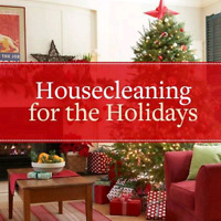 Cleaning service for the holidays