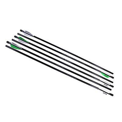 "Benjamin Sheridan AB6PKA Airbow 250 Arrows 26"" 375 Grains Carbon Fiber"