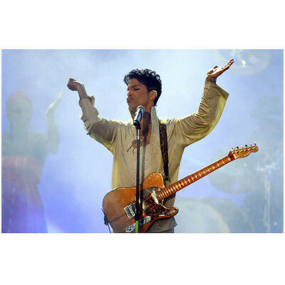 Prince (1958-2016) What an Amazing Artist 11 x 14 inch photo