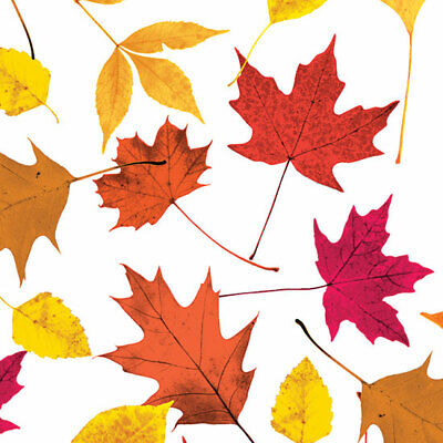 Autumn Leaves Tissue Paper # 597 -- 10 Large Sheets (Tissue Paper Leaves)