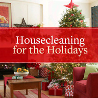 Affordable House Cleaning by Elsie!