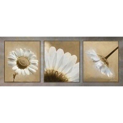 Art Print, Framed or Plaque - Daisy Trio by Lori Deiter - LD1101