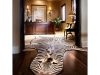 Zebra rug. Full skin zebra carpet