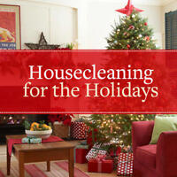 GET A JUMP ON HOLIDAY CLEANING TODAY!