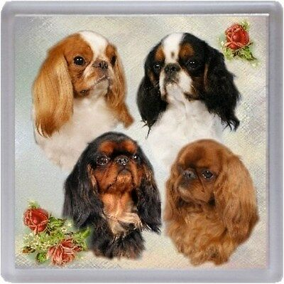 King Charles Spaniel Coaster No 3 by Starprint