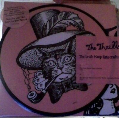 "The Thrills the Irish keep gate-crashing ltd. numbered vinyl 7"" pic/disc sealed!"