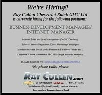 BUSINESS DEVELOPMENT MANAGER/INTERNET SALES