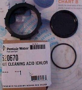 Pentair Intellichlor Ic40 Ebay