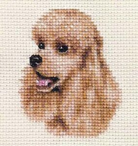 APRICOT POODLE, dog, puppy ~ Full counted cross stitch kit with all materials