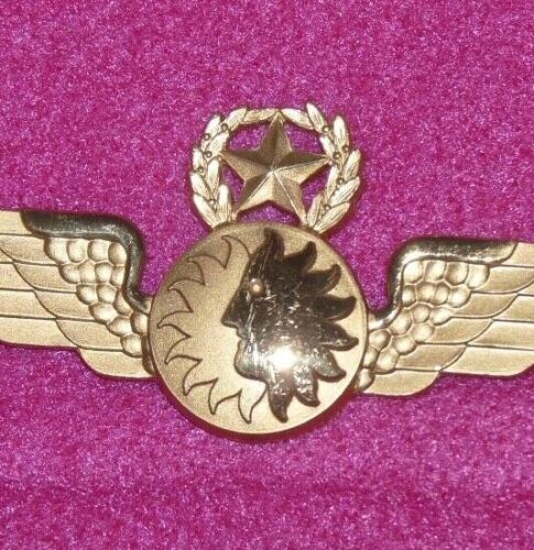 Vintage NAL National Airlines Captain Pilot Sun Face Wings Badge Rare NOS