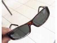 UNISEX EMPORIO ARMANI Sunglasses