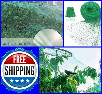 33 FT Garden Netting Anti Bird Nylon Heavy Duty Mesh Fruits Protector Net, Green