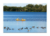 Amazing 70,567 SF Island R-6 Residential Lot AT REDUCED PRICE