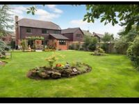 Great Holm 4 bed detached avail immediately 16th June! £1500pm