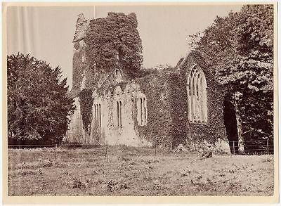 Muckross Abbey Killarney National Park  County Kerry  Ireland Photo