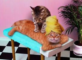 💖💖 Magic hands massage 🤗 English therapist 💖💖