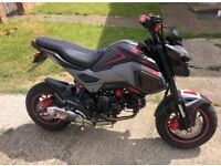 Honda msx 125 with 181 big bore kit lots of extras