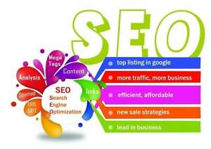 SEO Service for Businesses