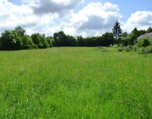 Recherche d'un terrain en campagne