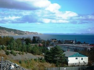 83-89 Mint Cove Pond Rd - Spaniards Bay, NL - MLS# 1138694