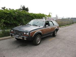1987 AMC Other Wagon