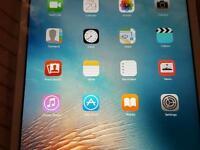 Apple ipad mini £120 ONO