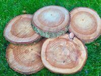 Log slices, natural decorations