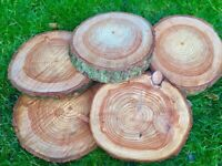 Log slices perfect for cake stands or table decorations centre pieces