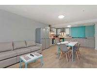 Room en-suite in Student Accomodation in a shared flat (Short Lease: May - July)