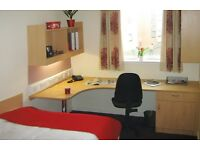 En-suite Student room available in 4 bedroom flat