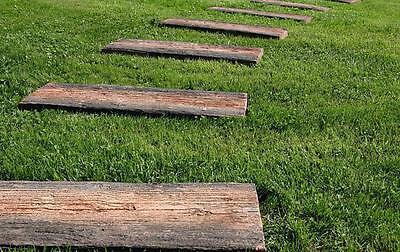 Trittplatten länglich mit täuschend echter Holzstruktur, Lieferung möglich