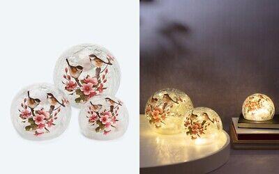 LED Glaskugeln 2er Set mit Lichterkette Vögel Deko 11+14 cm Crackle Glas NEU