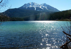 PRIVATE 1 BED HOME, LUSSIER HOTSPRINGS IN WHITESWAN PROV PARK,
