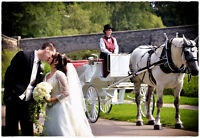 Horse and carriage for your special event