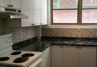 ****Renovated 4 1/2 DOWNTOWN****